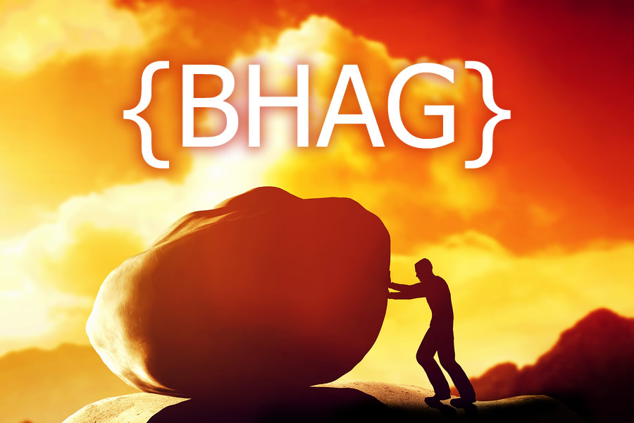 Meet your Big Hairy Audacious Goal {BHAG}
